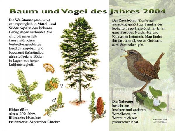 Baum und Vogel des Jahres 2004