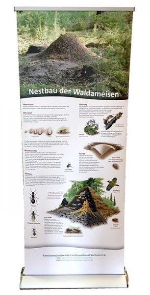 Roll-up-System Waldameise