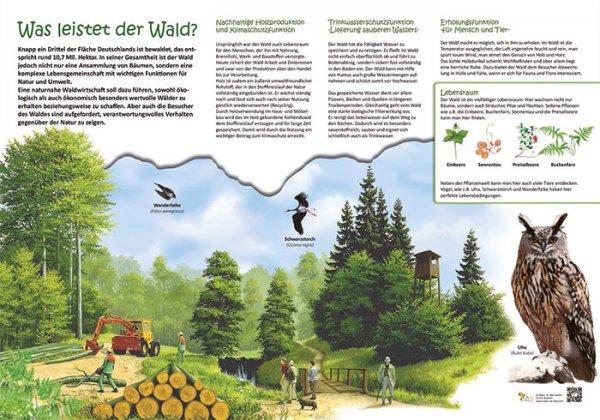 Was leistet der Wald?
