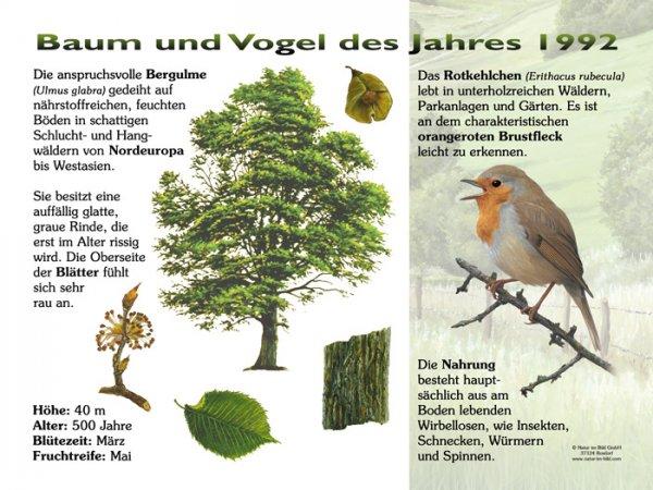 Baum und Vogel des Jahres 1992
