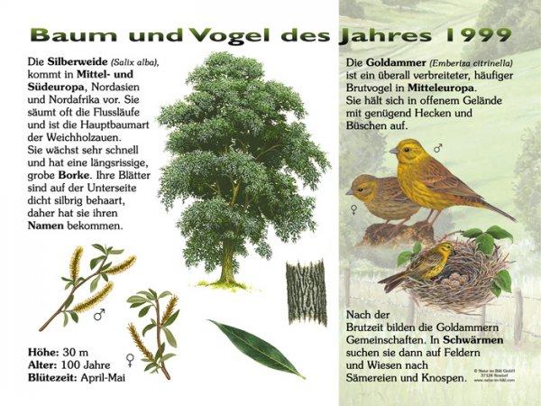 Baum und Vogel des Jahres 1999