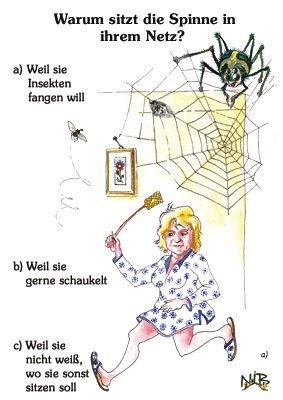 Warum sitzt die Spinne in ihrem Netz?