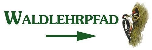 Waldlehrpfad-Spechte