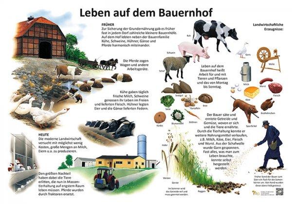 Leben auf dem Bauernhof