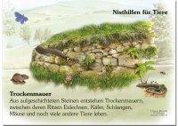 Nisthilfe für Tiere - Trockenmauer