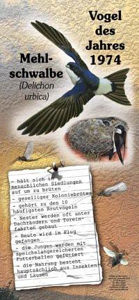 1974 Mehlschwalbe