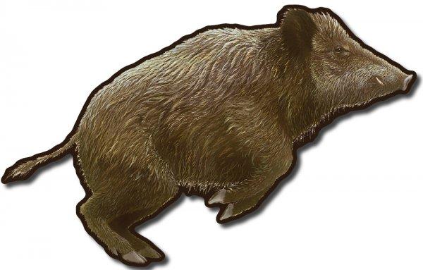Tiersilhouette - Wildschwein
