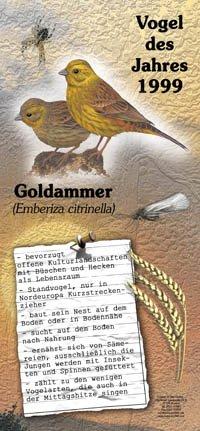 1999 Goldammer