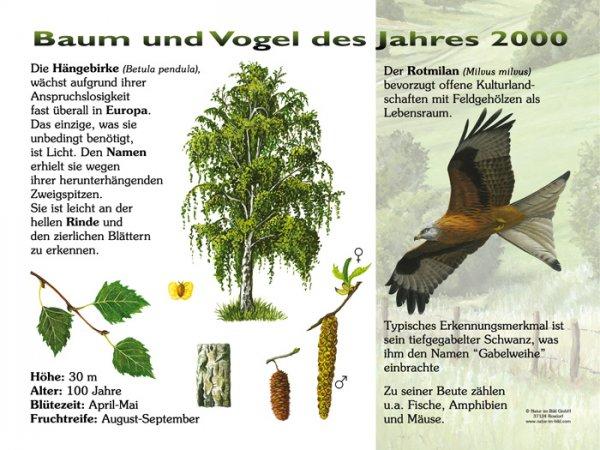 Baum und Vogel des Jahres 2000