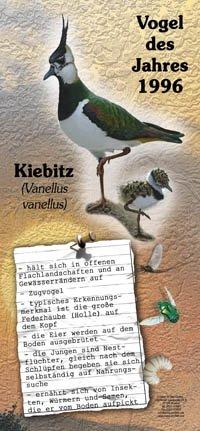 1996 Kiebitz