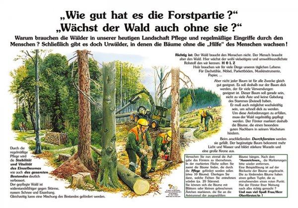 Wie gut hat es die Forstpartie, wächst der Wald auch ohne sie?