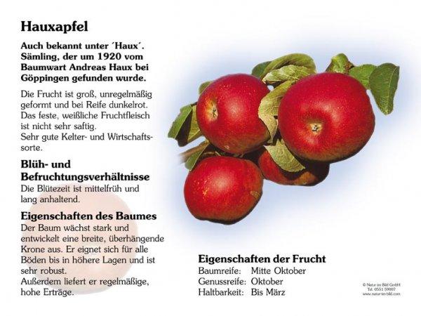 Hauxapfel