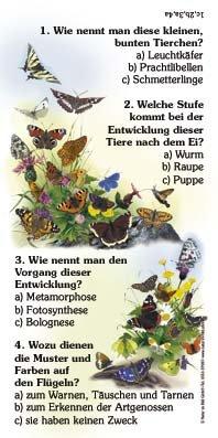 Schmetterlinge - Quiz