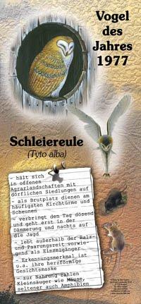 1977 Schleiereule