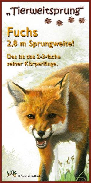 Tierweitsprung Fuchs