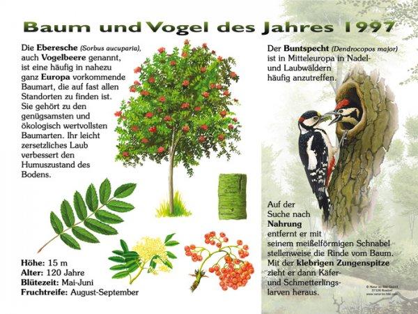 Baum und Vogel des Jahres 1997