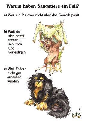 Warum haben Säugetiere ein Fell?