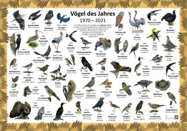 Vögel des Jahres 1970-2021