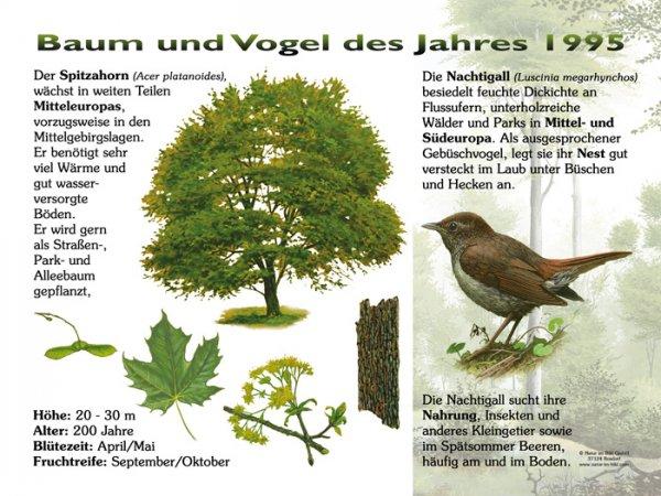 Baum und Vogel des Jahres 1995
