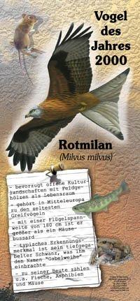 2000 Rotmilan