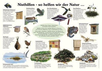 Nisthilfen - So helfen wir der Natur