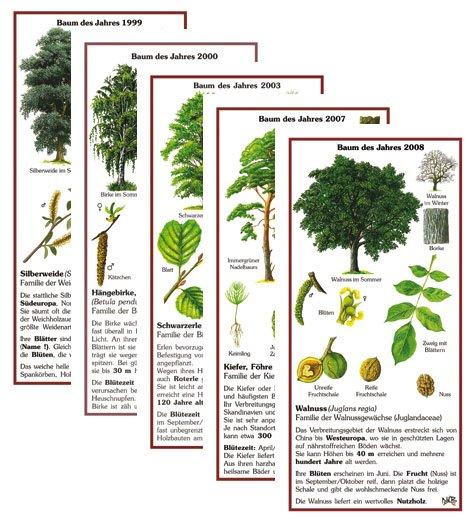 33 Bäume des Jahres von 1989-2021 - brauner Rahmen
