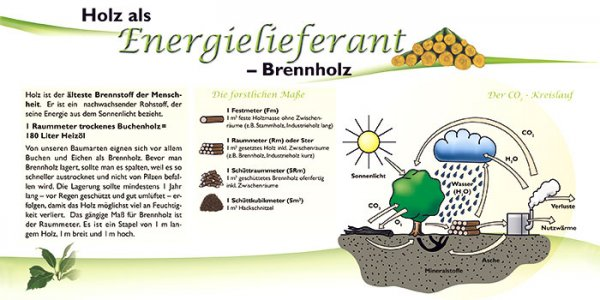 Holz als Energielieferant