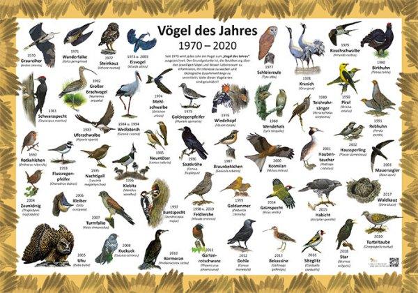 Vögel des Jahres 1970-2020