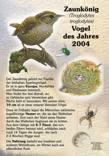 Vogel des Jahres 2004 - Zaunkönig