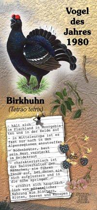 1980 Birkhuhn
