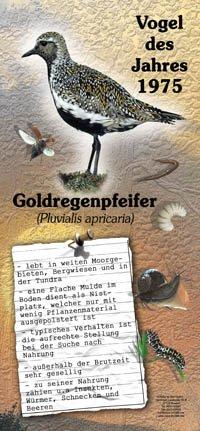 1975 Goldregenpfeiffer