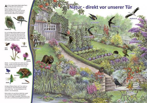 Natur vor unserer Tür