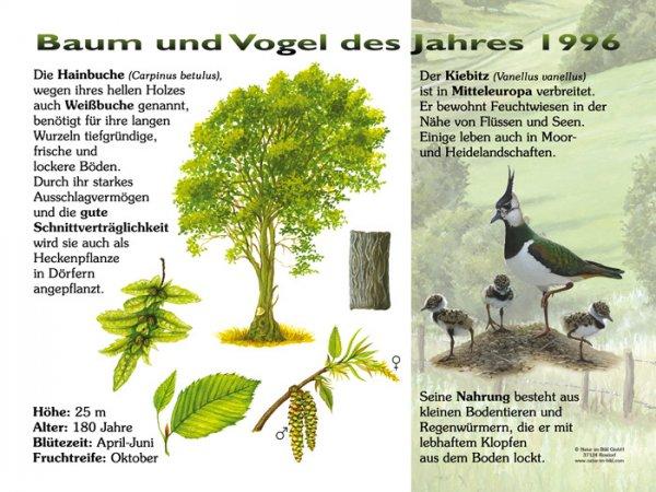 Baum und Vogel des Jahres 1996