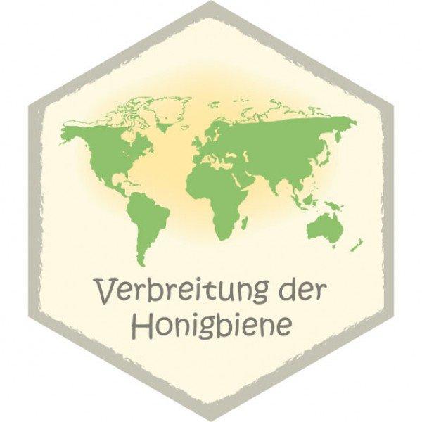 Wabe Verbreitung der Honigbiene