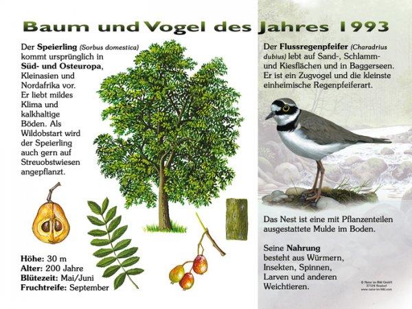 Baum und Vogel des Jahres 1993