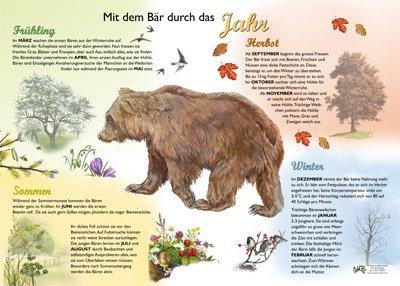 Mit dem Bär durch das Jahr