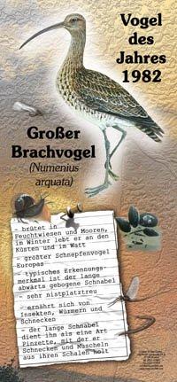 1982 Großer Brachvogel