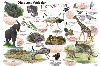 Die bunte Welt der Tierrekorde