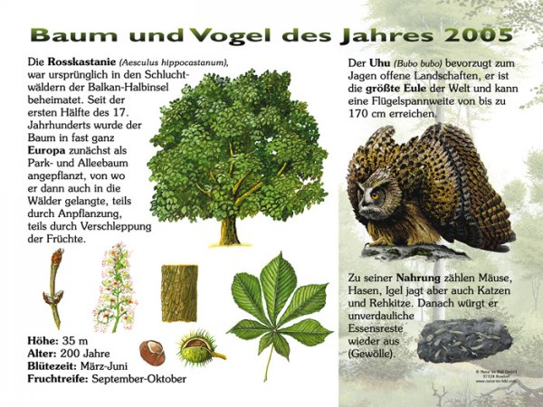 Baum und Vogel des Jahres 2005