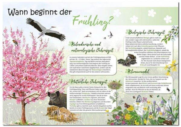Wann beginnt der Frühling