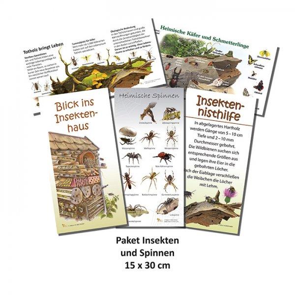Paket Insekten und Spinnen
