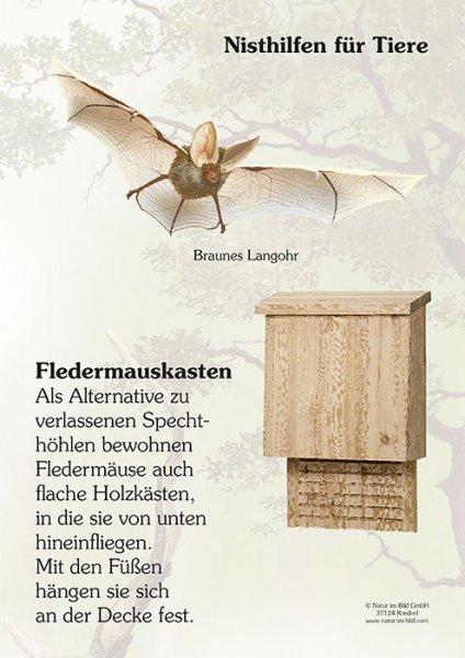 Nisthilfen für Tiere - Fledermauskasten