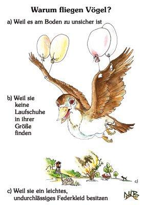Warum fliegen Vögel?