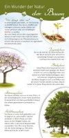 Ein Wunder der Natur - Der Baum