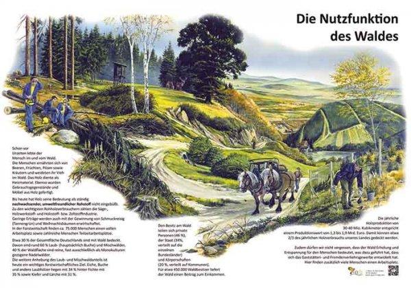 Nutzfunktion des Waldes