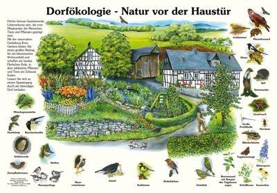 Dorfökologie - Natur vor der Haustür