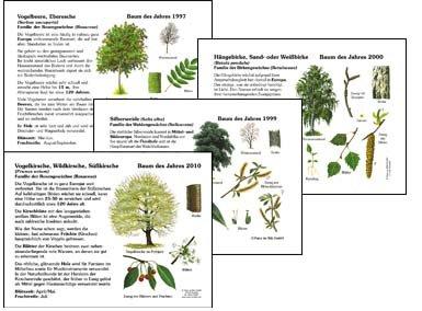 33 Bäume des Jahres 1989-2021 - Paket
