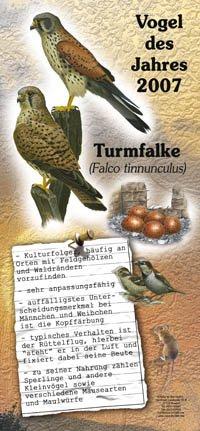 2007 Turmfalke