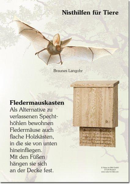 Nisthilfe für Tiere - Fledermauskasten