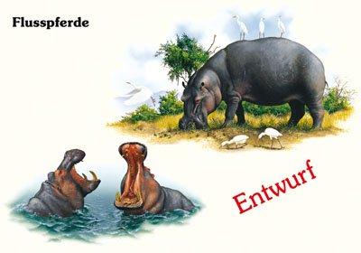 Flusspferde II